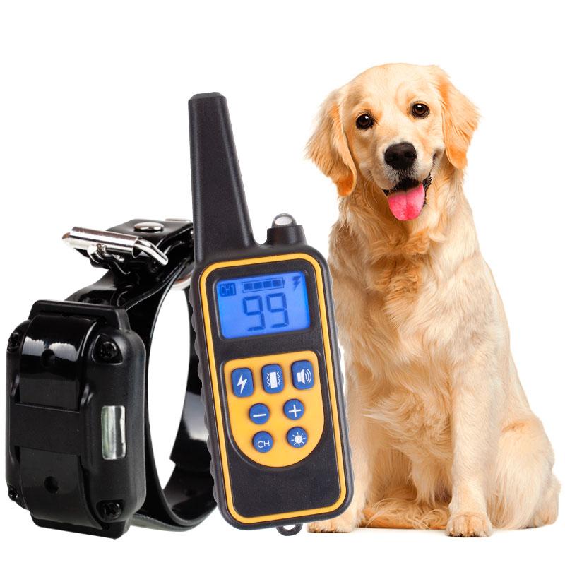 Σετ Κολάρα εκπαίδευσης 800 μέτρων για 1 σκυλί